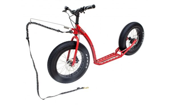 footbike-kostka-raptor-max-dog-g5-2